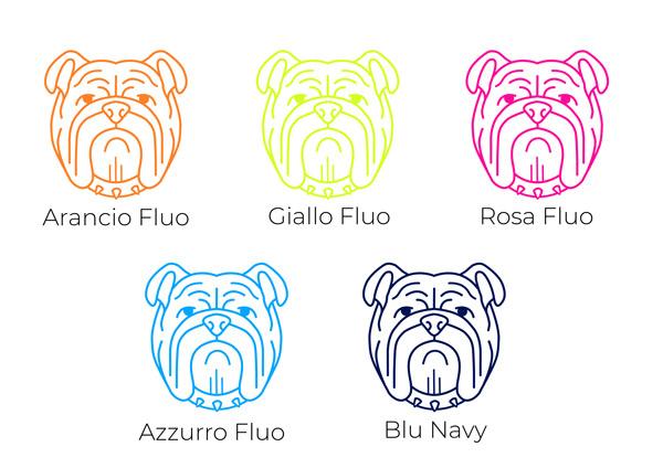Colori-bulldog